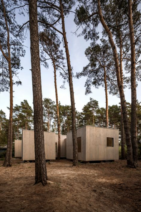 This Forest House Will Completely Change Your Thinking Of Living In The Forest